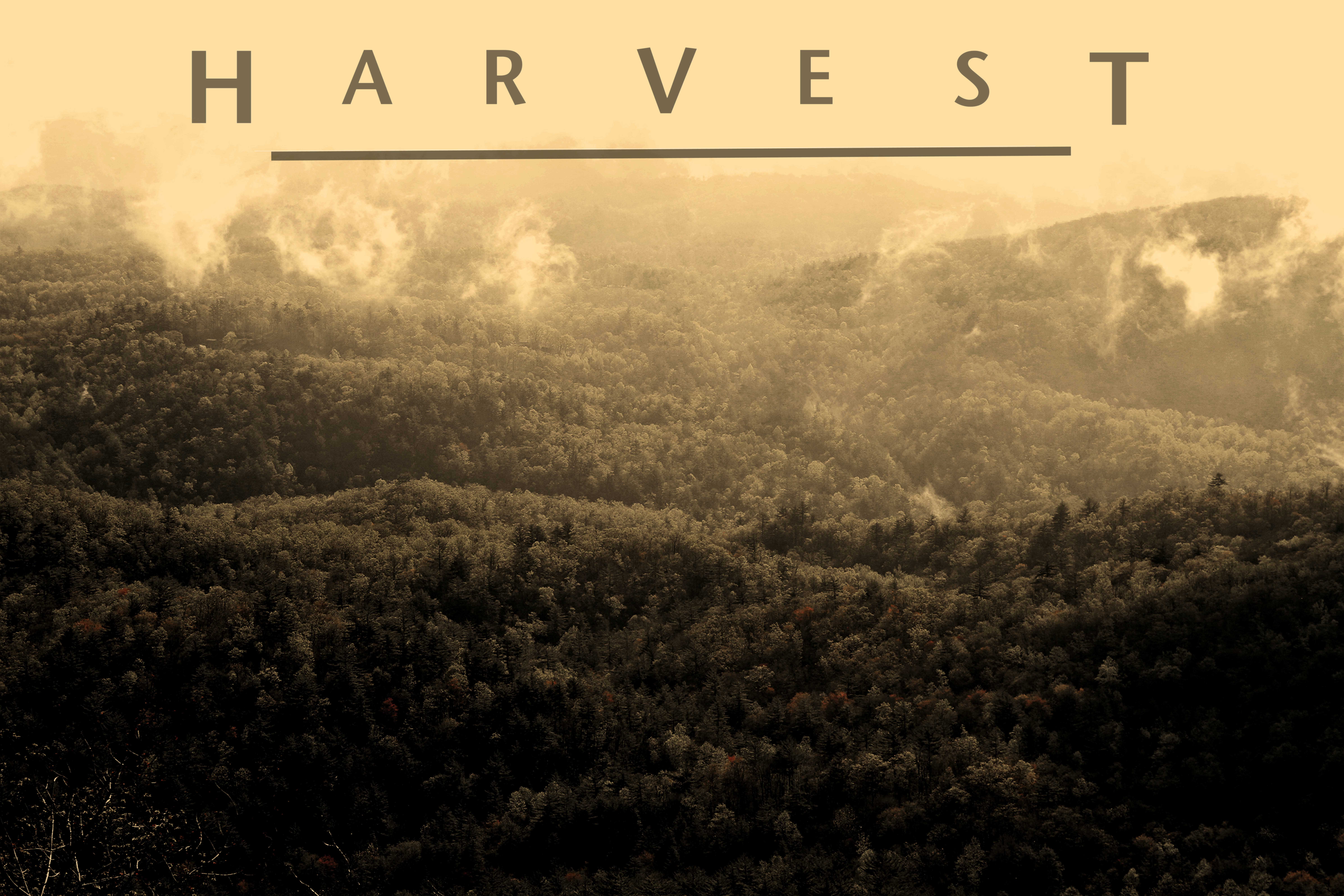 Harvest is Casting
